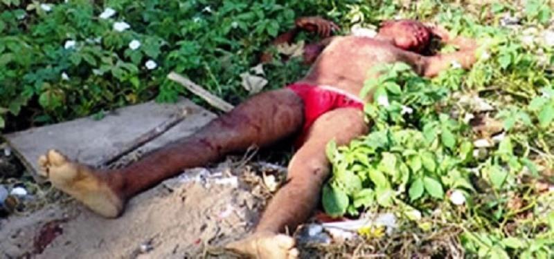 Homem deixa mulher menstruada em casa, tenta abusar de jumenta e leva coice fatal