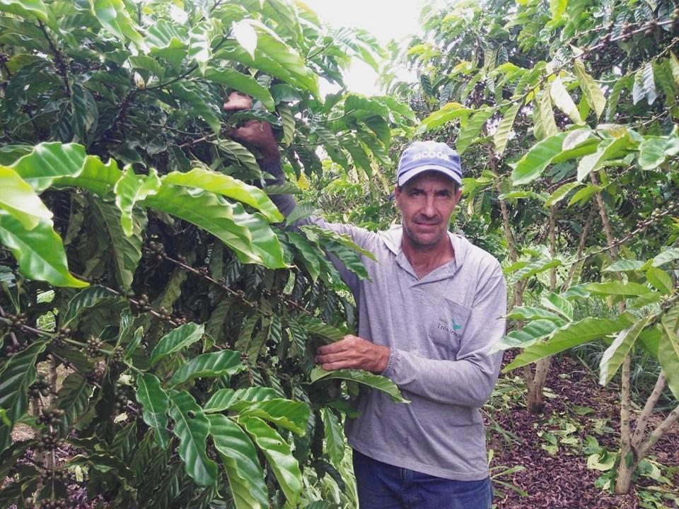 Produção de café sustentável e tecnológica recebe suporte do Incaper em Sooretama, no ES