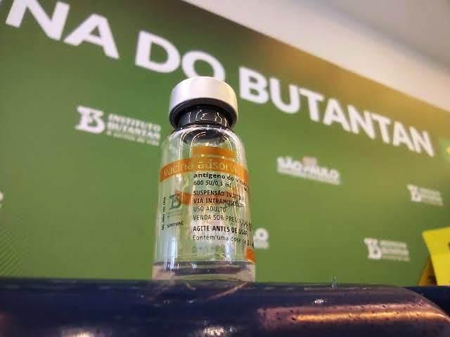 Pinheiros recebe lote de 137 doses da vacina CoronaVac nesta quinta-feira (21)