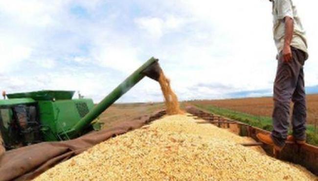 Governo zera taxa de importação de soja e milho para conter inflação